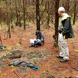 forensics as a crime scene investigator This site discusses the different types of forensic science and the use of forensics in crime scene investigations and pathology.